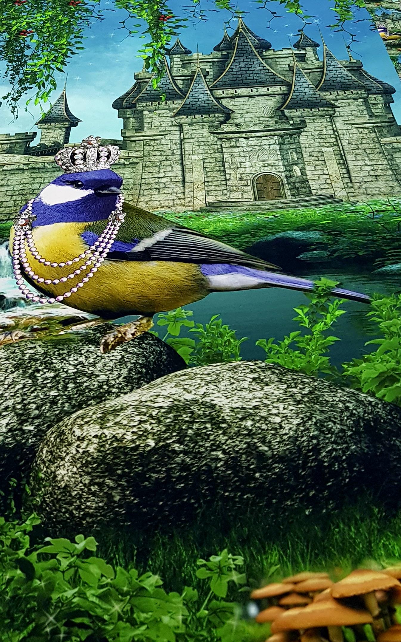 digitaletricotdubbelzijdigepanelvogelmetsieraden