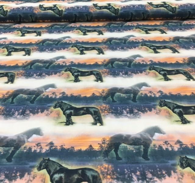 digitaletricotfriespaard