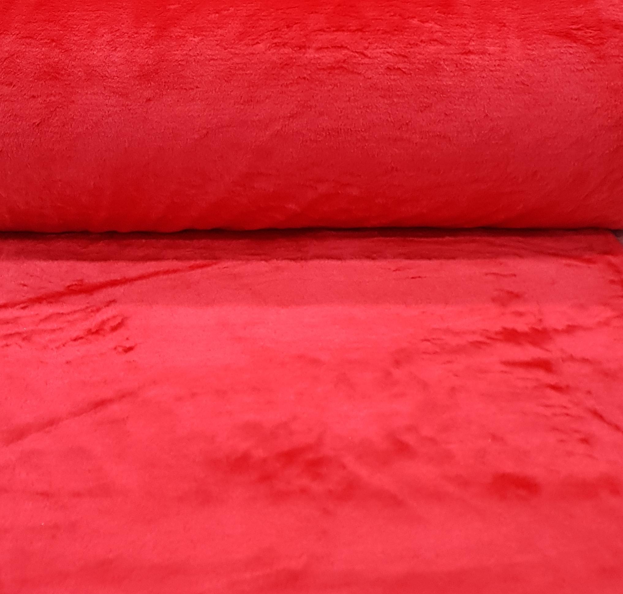 roodkortharigbont